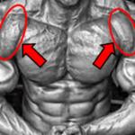 【筋トレ】肩の前部を発達させるエクササイズ:伸張刺激を入れまくる!