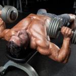 【筋トレ】大胸筋の成長を促すダンベル・チェストプレス