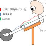 【筋トレ】プリーチャーカールの本領発揮!