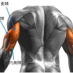 【筋トレ】膨れ垂れ下がるデカい上腕三頭筋をつくる:PJRプルオーバー